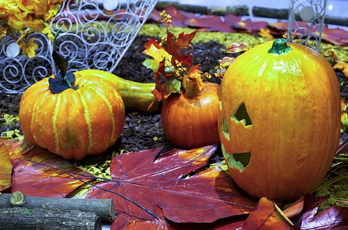 holiday-halloween-1.jpg